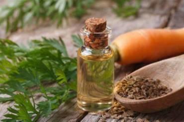 Эфирные масла семян моркови